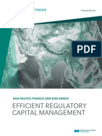 Efficient Regulatory Capital Management