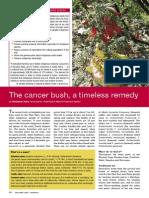 02 Cancer Bush Dec. 2007 (1)