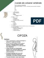 135573293-CIFOZA