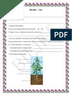 Biljke 1.Deo