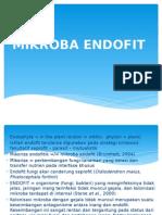 Endofit