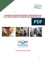 Lineamientos Tecnicos Promotores Redes Integradas Servicios de Salud v4(1)