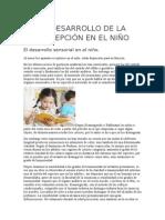 El Desarrollo de La Percepción en El Niño