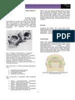 57094676-Fraktur-Zygomaticomaxillary-Complex (1).doc