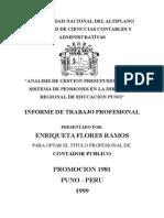 Analisis de Gestion Presupuestaria Del Sistema de Pensiones en La Direccion Regional de Educacion
