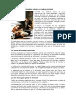 VERDADERO SIGNIFICADO DE LA NAVIDAD.docx