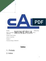 Informe CAP Ronald Bustos Soto IEMPMI Paralelo 1