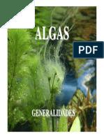 Algas - Primera Parte