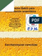 biorreactor batch