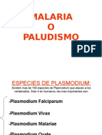 Copia Paludismo.ppt