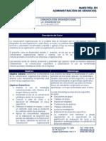 Programa Comunicacion Organizacional Mba