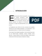 Informe 01