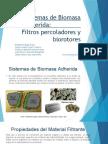 Sistemas de Biomasa Adherida