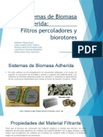 Sistemas de Biomasa Adherida