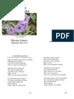Mestre Irineu - A Santa Missa - Folha Usada