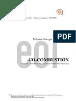 Componente Digital (6)
