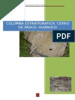 Informe estratigrafia - huanuco