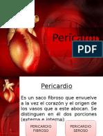 Corazon -Pericardio