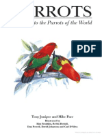 Parrots a Guide to the Parrots of the World