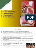 Tema 1 Proteinas.ppt