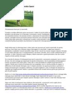 14349708775587eafd70856.pdf