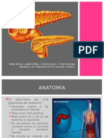 Páncreas.pptx