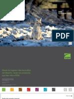 Reporte SQM 2013 navegable.pdf