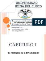 Universidad Andina Del Cusco Presentacion