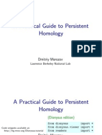 Morozov - A Pratical Guid to Persistent Homology.pdf