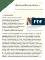 Consorcio Apícola Generará Nutraceúticos a Fines de 2015 - Diario Financiero