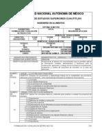 Formulación y Evaluación de Proyectos UNAM
