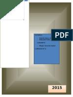 Proyecto Final de La Diplomatura en Pedagogia y Educacion Social (1)