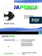 9662026-Acuaponia (1).pps