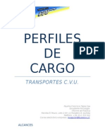 Manual de Perfiles de Cargfo CVU