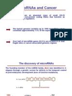 MicroRNA e Cancro I
