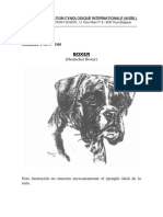 estandar del boxer.pdf