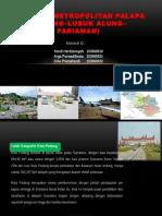 Kawasan Metropolitan PALAPA