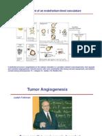 Cellule Staminali Del Cancro II