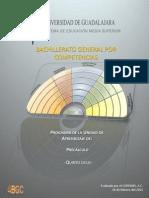 BGCUDG_C5_Precalculo_160211.pdf