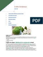 Ficha técnica del cultivo de chirimoya.docx