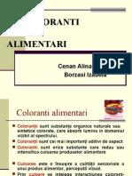 COLORANTI proiectfinal2.
