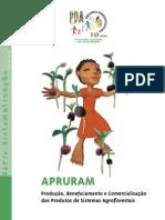 APRURAM - Produção, Benefi ciamento e Comercialização dos Produtos de Sistemas Agroflorestais