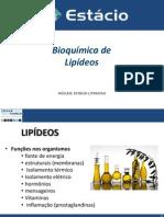 Lipídeos.pdf
