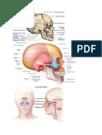 Pict Radiology