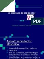 1 Elaparatoreproductorfym 120415225642 Phpapp02