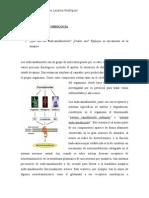 PREGUNTAS DE PSICOBIOLOGIA.docx