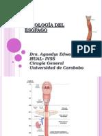 esofago ags modificado.ppt