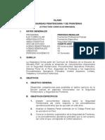 SEGURIDAD PENITENCIARIA Y DE FRONTERAS (1).doc