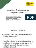 arritmiascardiacasysuinterpretacinekg-100705160459-phpapp02