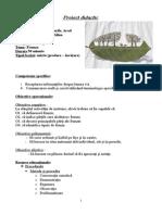 proiect_frunza